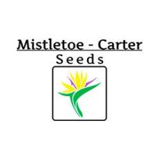 MC-seeds